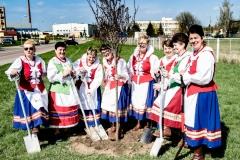 Sadzenie drzew na Zielonej-26