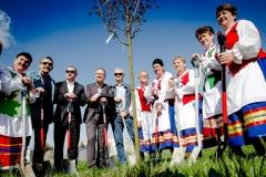 Sadzenie drzew na Zielonej-51