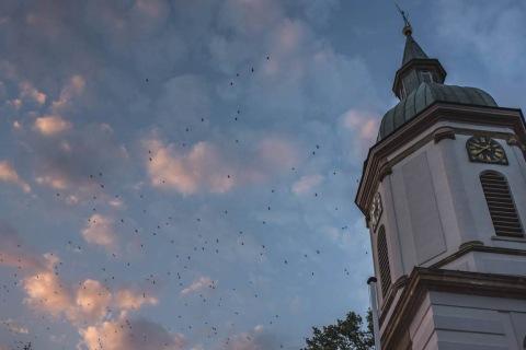 Extern-Gebäude-öffentliche-Plätze-Auftrag-Konietzny-Nicolaikirche-mit-Krähen-