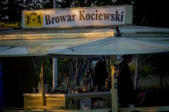 festiwal (100 of 237) — kopia — kopia