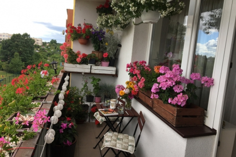 18-Bigus-balkon