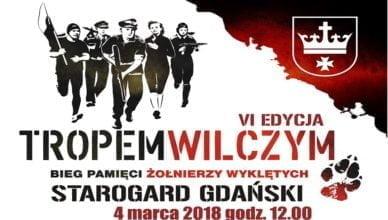 """VI edycja biegu """"Tropem Wilczym"""""""
